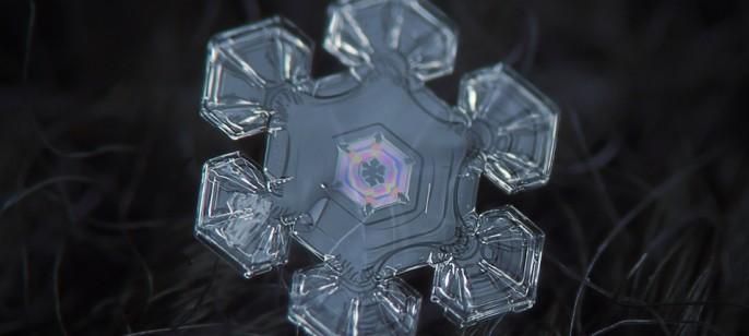 Winter Wonderland by Alexey Kljatov   My Design Week