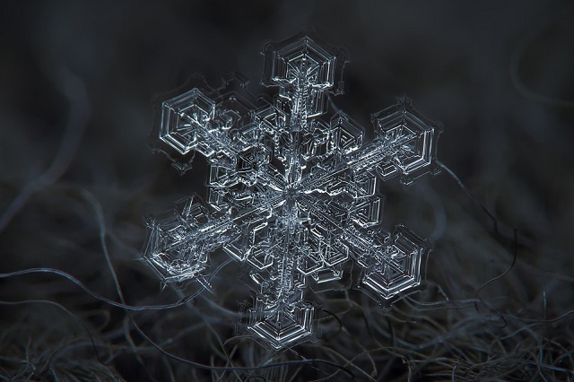 Macro Snowflakes | Winter Wonderland - Alexey Kljatov amazing snowflack photos  Winter Wonderland by Alexey Kljatov mydesignweek Macro Snowflakes Alexey Kljatov 16