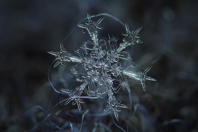 Macro Snowflakes | Winter Wonderland - Alexey Kljatov amazing snowflack photos  Winter Wonderland by Alexey Kljatov mydesignweek Macro Snowflakes Alexey Kljatov 2