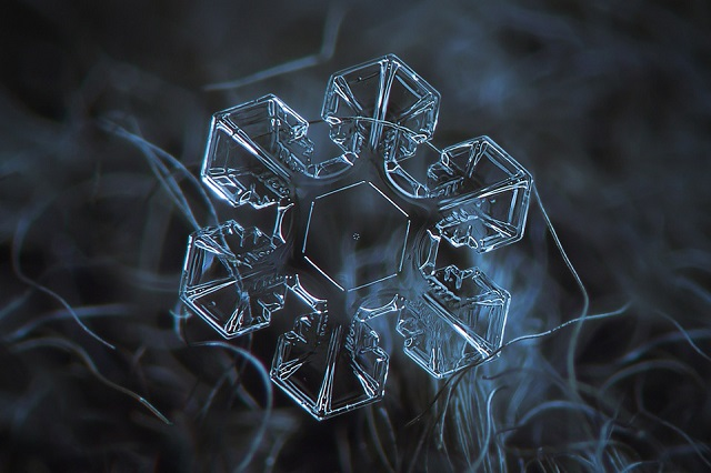 Macro Snowflakes | Winter Wonderland - Alexey Kljatov amazing snowflack photos  Winter Wonderland by Alexey Kljatov mydesignweek Macro Snowflakes Alexey Kljatov 3