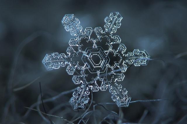 Macro Snowflakes | Winter Wonderland - Alexey Kljatov amazing snowflack photos  Winter Wonderland by Alexey Kljatov mydesignweek Macro Snowflakes Alexey Kljatov 4