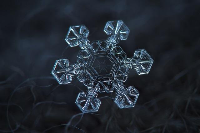 Macro Snowflakes | Winter Wonderland - Alexey Kljatov amazing snowflack photos  Winter Wonderland by Alexey Kljatov mydesignweek Macro Snowflakes Alexey Kljatov 5