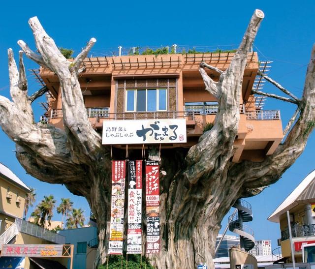 treehouse restaurant Shimayasai-my-design-week-top-10-things-to-do-in-japantreehouse restaurant Shimayasai-my-design-week-top-10-things-to-do-in-japan